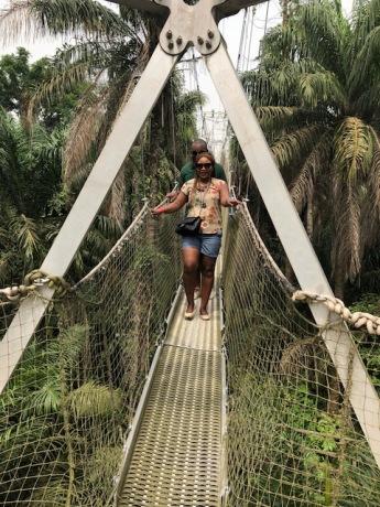 lekki conserv bridge