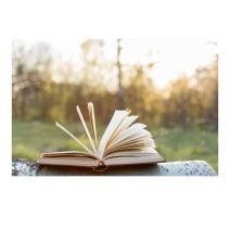 book under sunlight